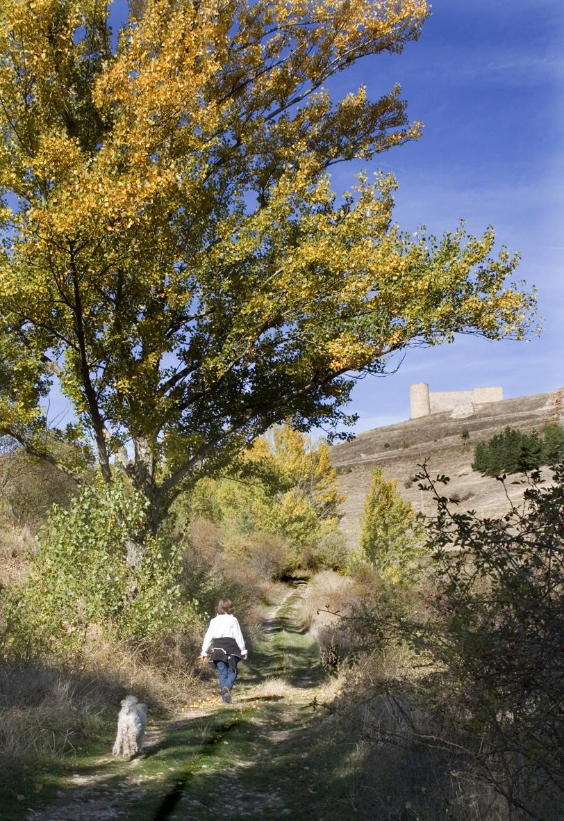 pueblo-calzada medieval_O9I8764